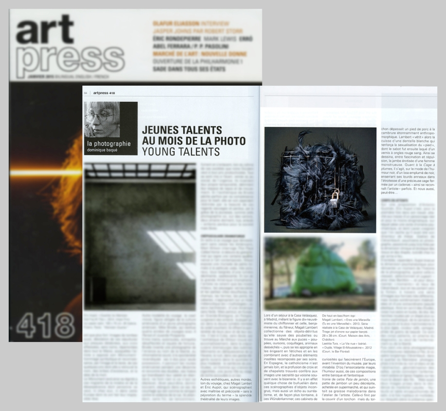 Art Press Janvier 2015