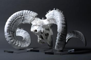 Worlds of Bones, Goat©MagaliLambert