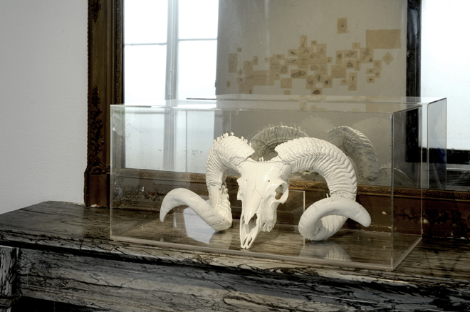 Worlds of Bones, Maison des Arts de Châtillon-2014©MagaliLambert-ADAGP