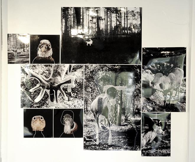 """""""Massacres"""" et quelques """"Portraits#1""""©MagaliLambert2014"""