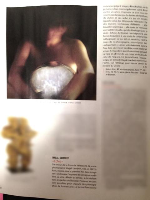 Article de Lydia Harambourg dans la Gazette de Drouot-Décembre 2013©MagaliLambert
