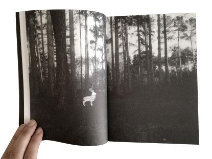 """Pages intérieures du livre """"Histoires Naturelles, Taches de rouge et de vert"""". 2014©MagaliLambert-ADAGP"""