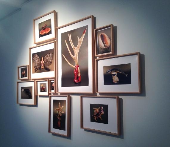 MagaliLambert-Galerie Arielle d'Hauterives - 2016