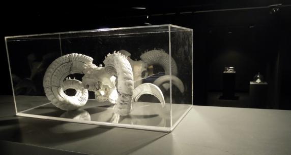 Worlds of Bones, Ateneo de Madrid, septembre 2013©MagaliLambert