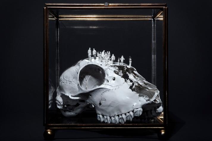 Worlds of Bones, Dog©MagaliLambert