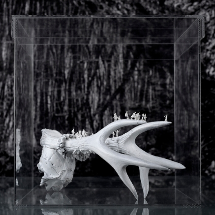 Worlds of Bones, Horns©MagaliLambert-ADAGP