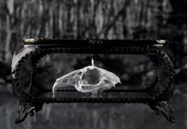 StandingOnARabbit©MagaliLambert-ADAGP