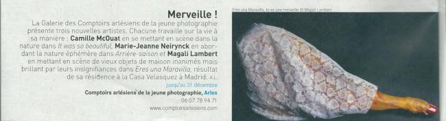 Article-Zibeline-Janvier2014©MagaliLambert