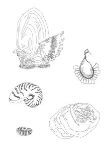 Planches de dessins Eres Una Maravilla 2013©MagaliLambert-ADAGP
