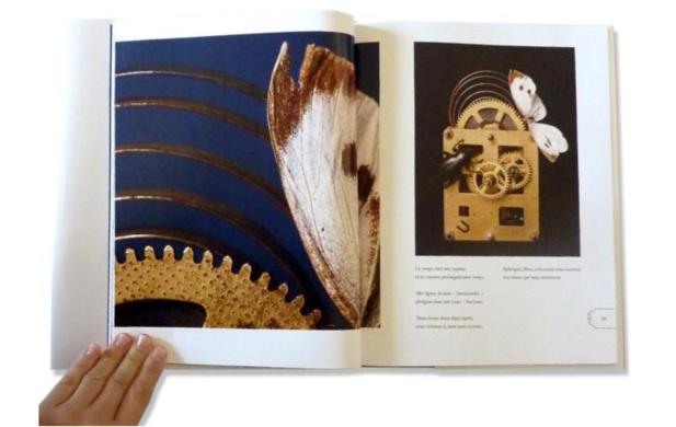 Eres una Maravilla - Livre 2013 - Pages intérieures