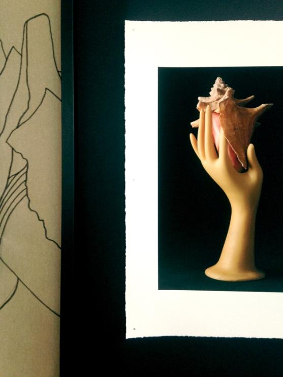 TuEsUneMerveille-CollectionBelge-Dessins©MagaliLambert