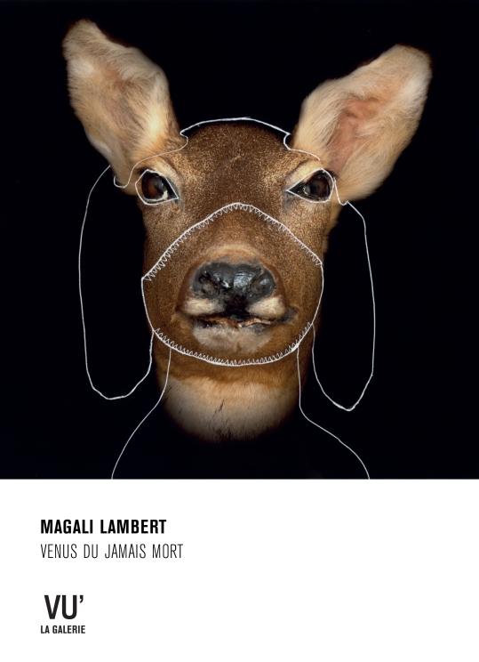 MagaliLambert-GalerieVU2018