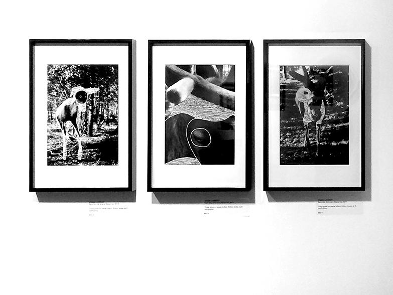 CollectiveVU©MagaliLambert-01-net