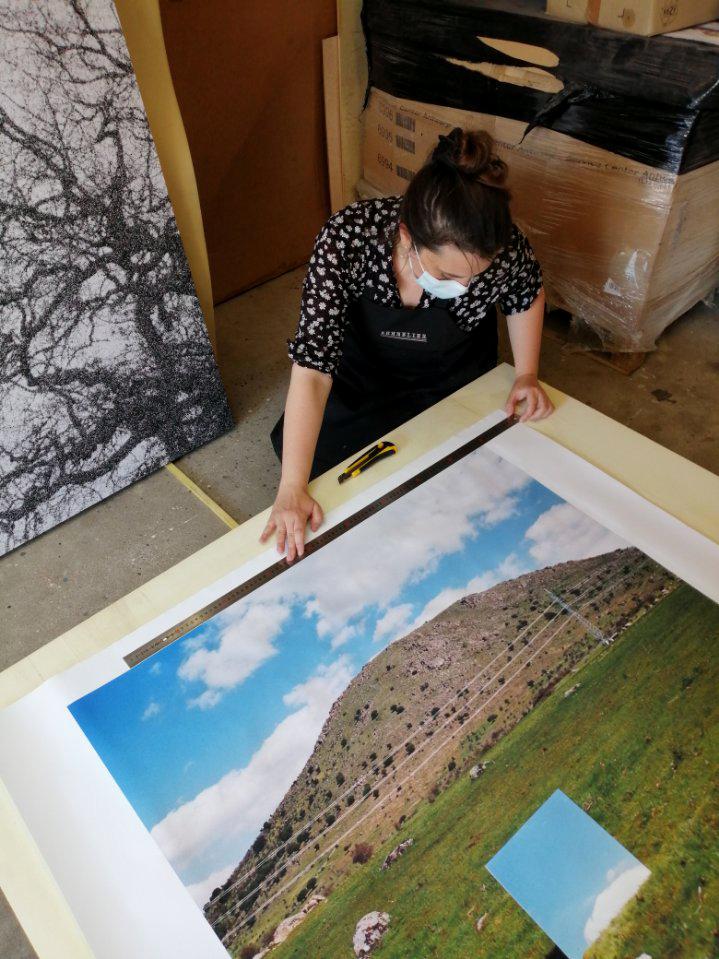 Regards croisés sur la nature, 2021, musée château de Saumur